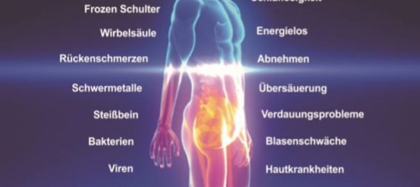Qi-Scanner Energetischer Ganzkörpercheck Energiearbeit Petra Lindner Salzburg-Land
